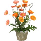 Image of Diane James Faux Poppies in Antiqued Pot For Sale