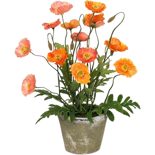 Diane James Faux Poppies in Antiqued Pot For Sale