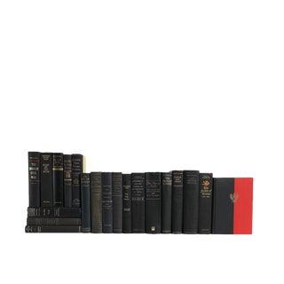 World History in Luxe : Set of Twenty Decorative Books