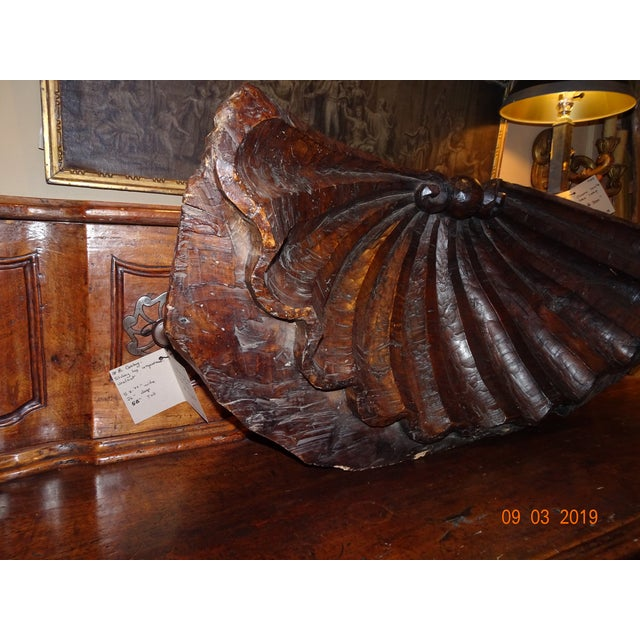 19th Century Walnut Carved Shell For Sale - Image 10 of 12