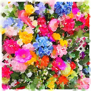 """""""Summer Flowers"""" Botanical Print by Jean Montanti For Sale"""