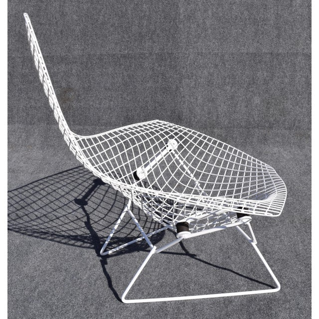 "Knoll Mid-Century Modern ""Bird"" Chair by Harry Bertoia for Knoll For Sale - Image 4 of 8"