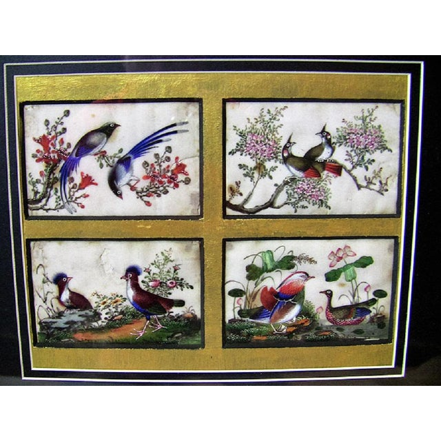 Lovely rare collage of Four Chinese hand-painted silk panels of exotic birds and birds of paradise …….. from circa 1850....