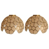 Image of Pair Capiz Shell Lamp Shades For Sale