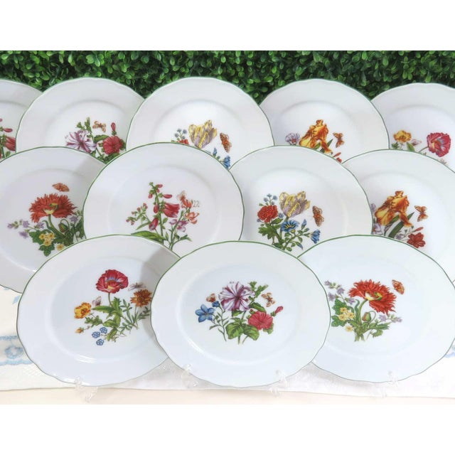 Bavarian Floral and Butterfly Plates, Set of 12