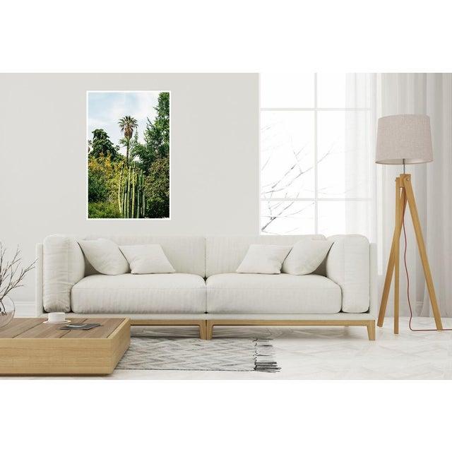 "Boho Chic ""California Flora"" Original Unframed Photograph For Sale - Image 3 of 6"