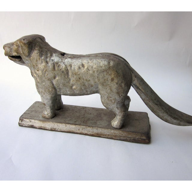 This is an antique cast iron dog figurine with mechanical tail handle and jaw that serves as a nutcracker! It is a...