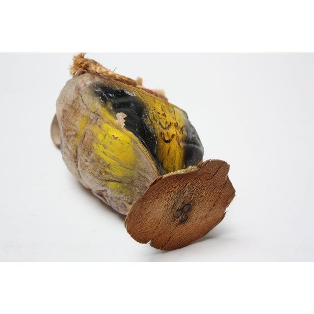Circa 1970s folk art owl sculpture composed of a coconut shell 'body,' rope eyes, and hand-painted detail throughout....