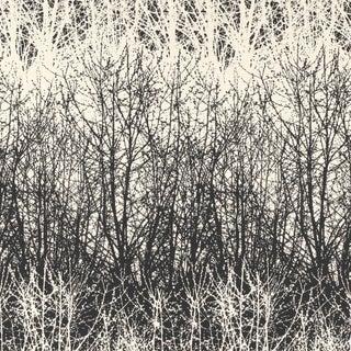 Schumacher X Vera Neumann Birches Wallpaper in Black / White Preview