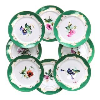 Mid 19th Century French Old Paris Porcelain Botanical Specimen Plates - Set of 8 For Sale