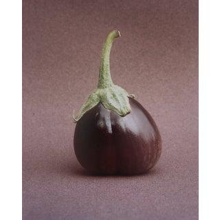 Eggplant Still lIfe Photograph Photo Garo For Sale