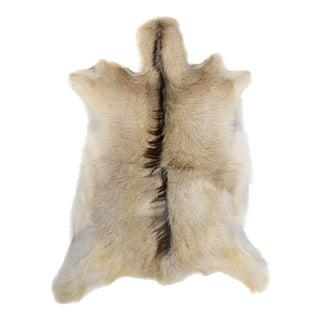 "Natural Goat Skin Pelt Cream Gray Rug - 2'4"" x 3'0"""