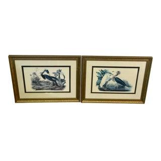 1980s Gilt and Navy Framed Louisiana Heron and Egret Audubon Prints - A Pair For Sale