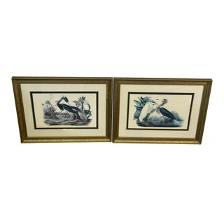 Vintage Custom Framed and Matted Audobon Louisiana Heron and Egret Audubon Lithographs - a Pair Gold and Navy Frames For Sale