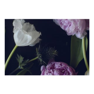 "Nicole Cohen ""Dark Flowers"" Pigment Print For Sale"