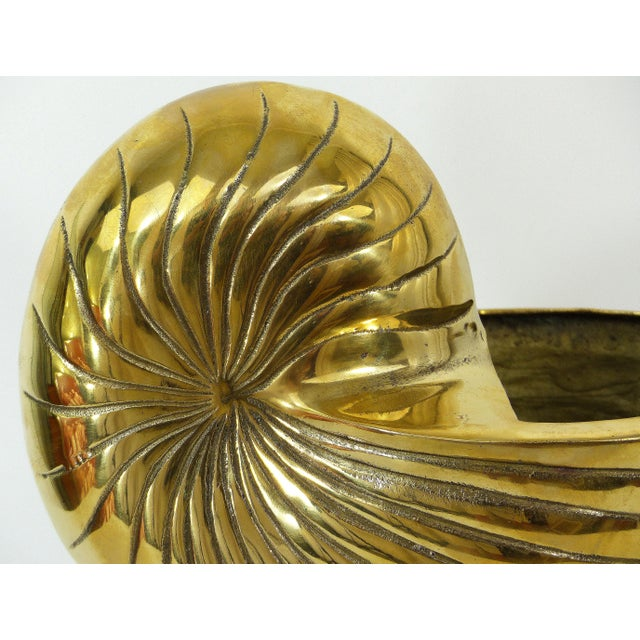 Vintage Large Cast Brass Nautilus Shell - Image 5 of 7