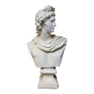 Vintage Plaster Bust of Apollo Belvedere For Sale