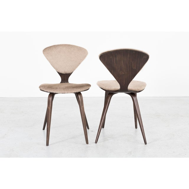 1960s Set of 6 Norman Cherner for Plycraft Dining Chairs For Sale - Image 5 of 11