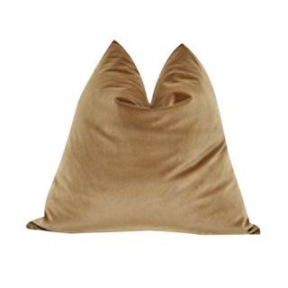 Transitional Fragments Identity Belgium Velvet Pillow For Sale