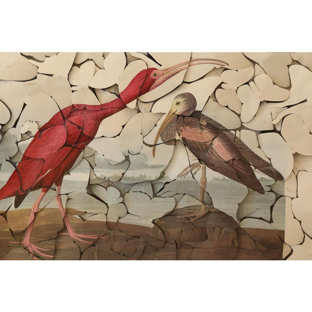 Butterfly box scarlet ibis: vintage color-printed lithograph, on fine hand-made paper (of Robert Havell's 'Scarlet Ibis,'...