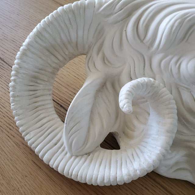 French Plaster Rams Head Wall Decor For Sale - Image 4 of 10