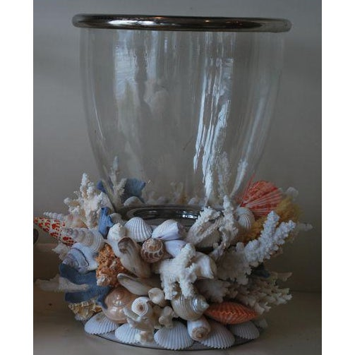 Christa's South Seashells Hurricane Lantern on Seashell Base For Sale - Image 4 of 4