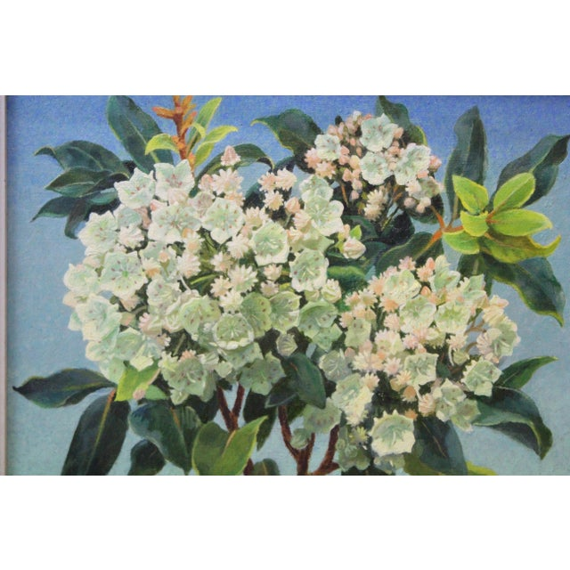 Mid 20th Century Mountain Laurel and Sky Oil Painting by Buchholz For Sale - Image 5 of 6