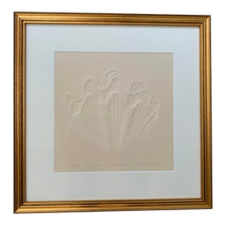 Late 20th Century Contemporary Coastal Seashell Embossed Art Print Signed Original, Framed For Sale