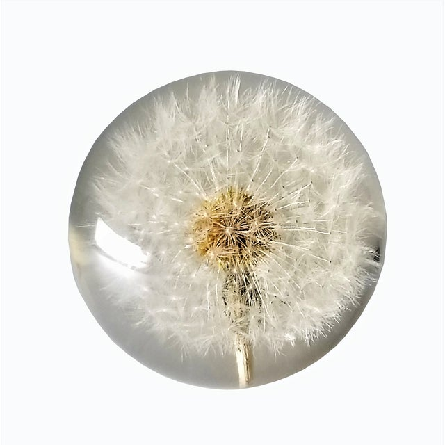 Offering an amazingly unique Lucite Dandelion sculpture, circa 1960s. This spherical sculpture/paperweight is a solid...