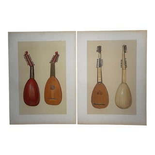 Antique Ltd. Ed. Lithographs-Musical String Instruments: Lute & Theorbo-A Pair For Sale