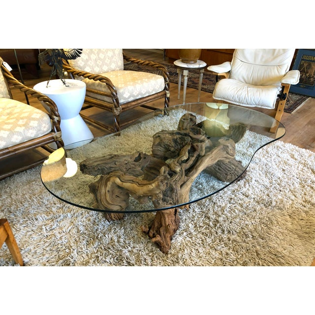 Circa 1960's sturdy organic burlwood root coffee table with thick tempered glass top. Excellent vintage condition.