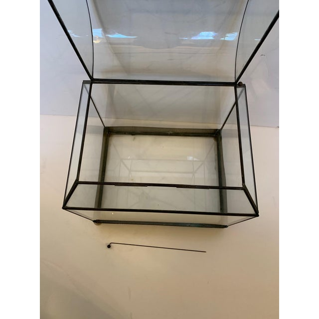 Traditional Vintage Glass and Metal Terrarium For Sale - Image 3 of 9