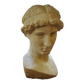 Italian Stone Bust of a Classical Roman For Sale