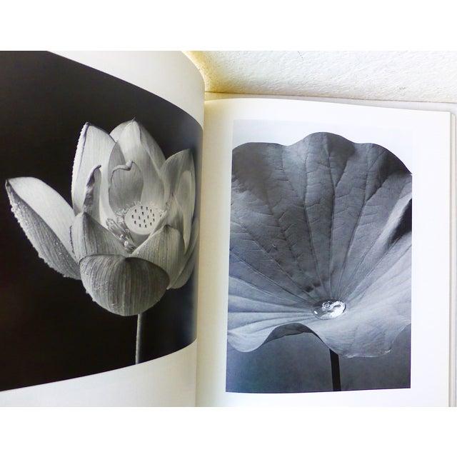 Hana, Yasuhiro Ishimoto Book For Sale - Image 5 of 11