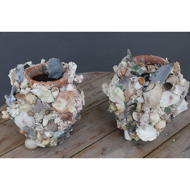 Shell-Covered Terracotta Cache-Pots For Sale - Image 9 of 9