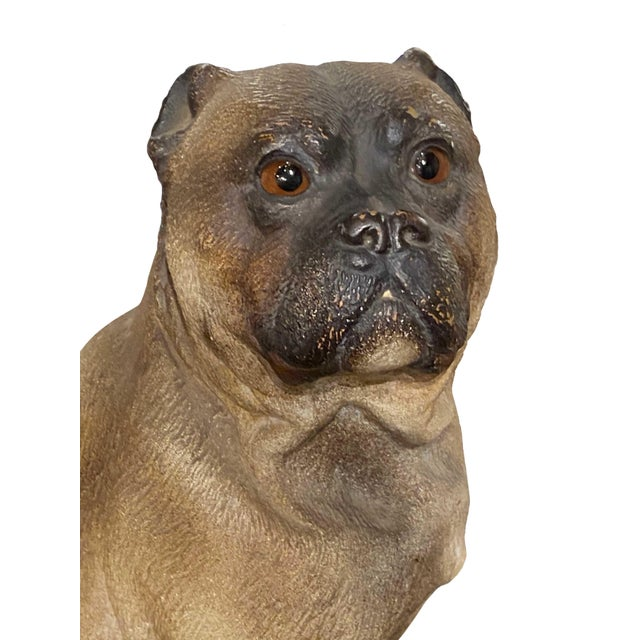 A 19th century English terra-cotta pug with glass eyes and such a great face!