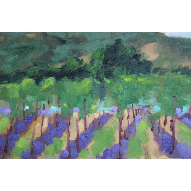 Shabby Chic Original Oil Painting Landscape Plein Air, Sonoma Vines For Sale - Image 3 of 12