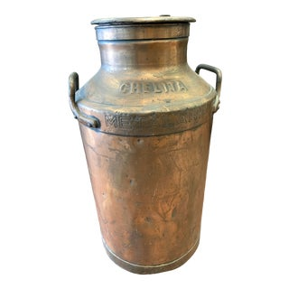 Antique Argentinian Copper Dairy Jug For Sale