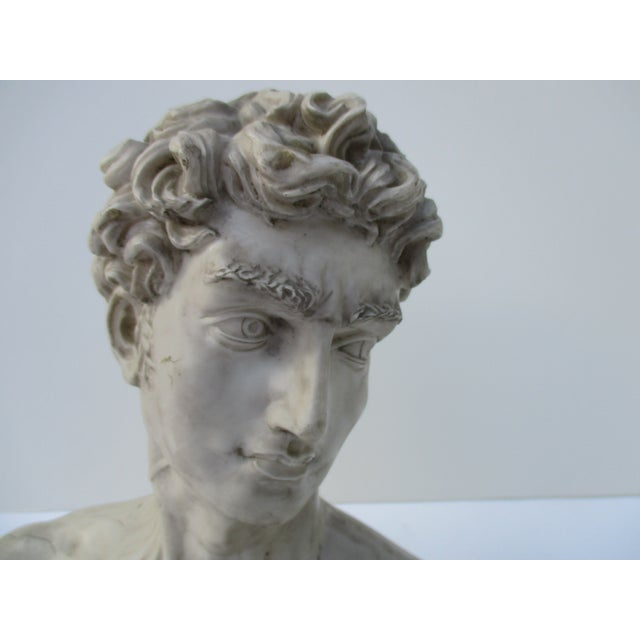 Neoclassical Vintage Cast Resin Bust - Image 9 of 11