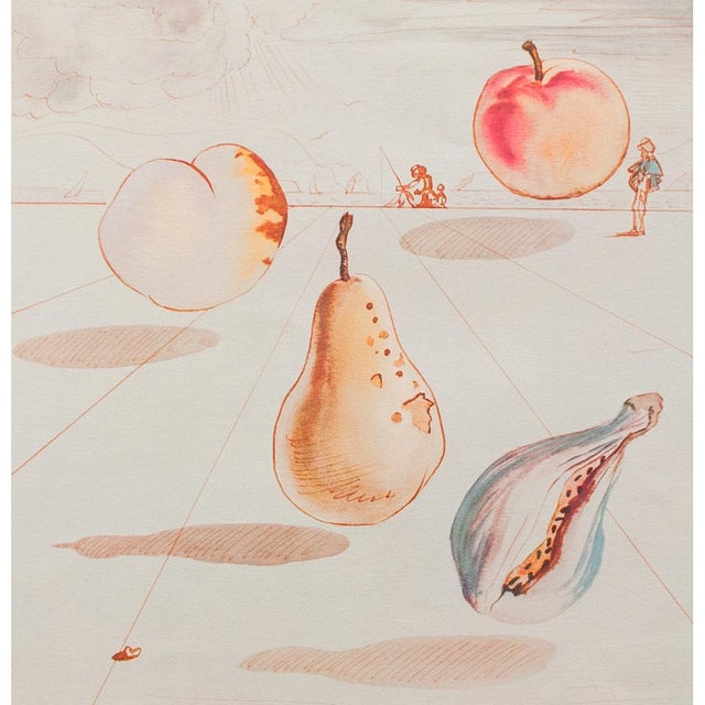 Lithograph 1955 Dali Fruits Original Period Lithograph From the Mrs. Albert D. Lasker Collection For Sale - Image 7 of 13