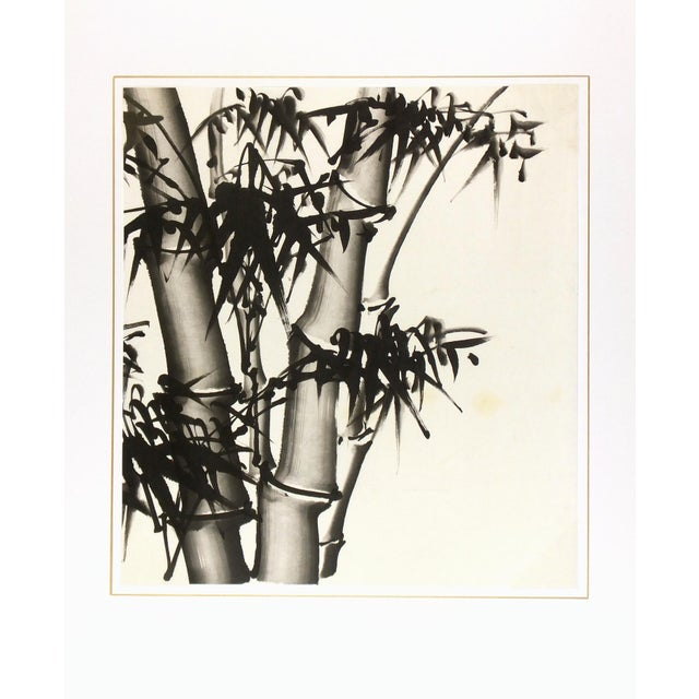 Chinese Bamboo Black and White Painting - Image 3 of 3
