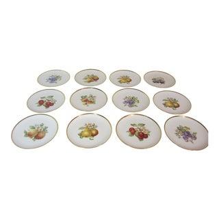 German Fruit Dessert Plates - Set of 12 For Sale
