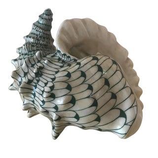 Green & White Fishnet-Style Seashell