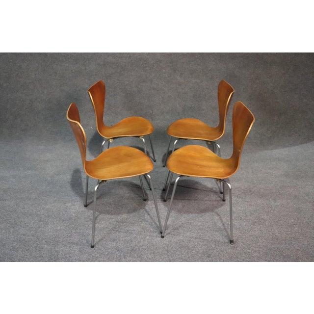 Arne Jacobsen Arne Jacobsen for Fritz Hansen Danish Bentwood Chairs - Set of 4 For Sale - Image 4 of 8