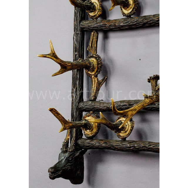 Black Forest Wooden Carved Coat Rack With Antler Carvings Ca. 1900 For Sale - Image 3 of 8