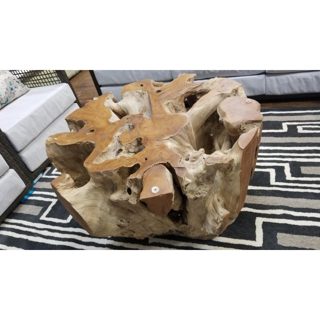 The terra teak root coffee table is made with a tree root that has been trimmed and hand finished to enhance the exquisite...