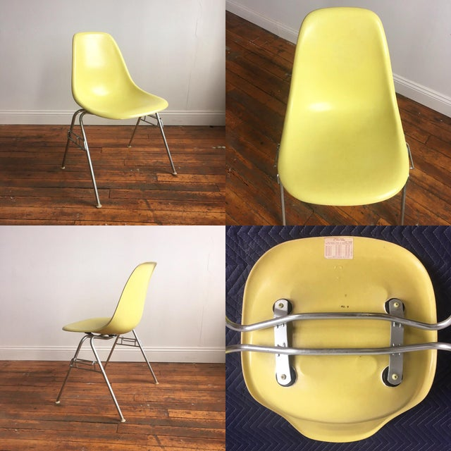 Vintage Herman Miller Eames Fiberglass Shell Chairs - Set of 4 - Image 6 of 10