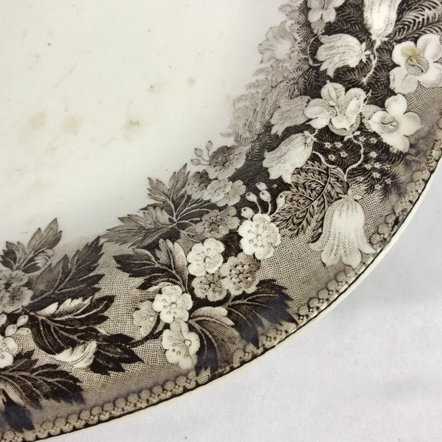 Wedgwood 19th C. Wedgwood Platters, Pair For Sale - Image 4 of 7