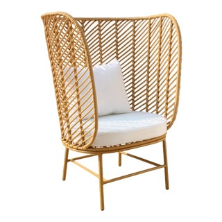 Modern Rattan Armchair Design For Sale