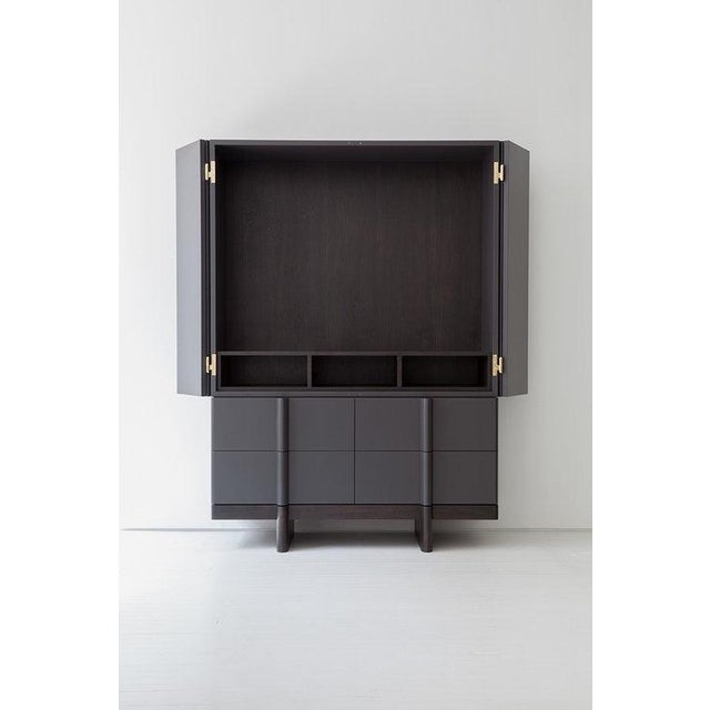 Modern Crain Cabinet For Sale - Image 3 of 7